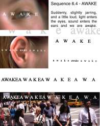 19.5_awake